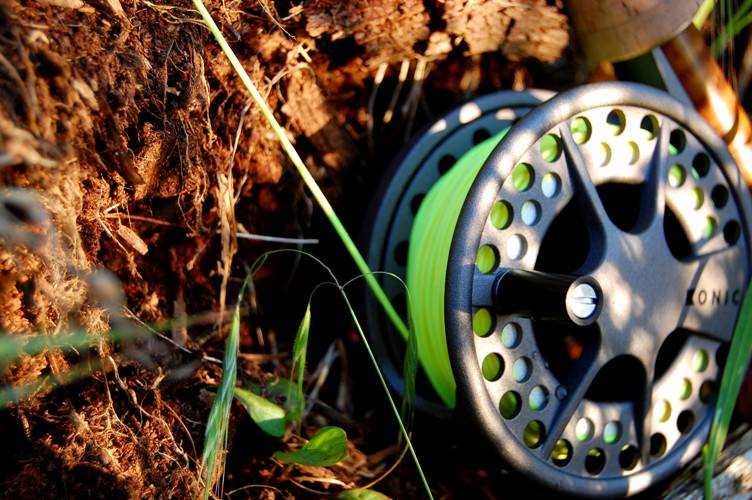 Choosing Fly Reel
