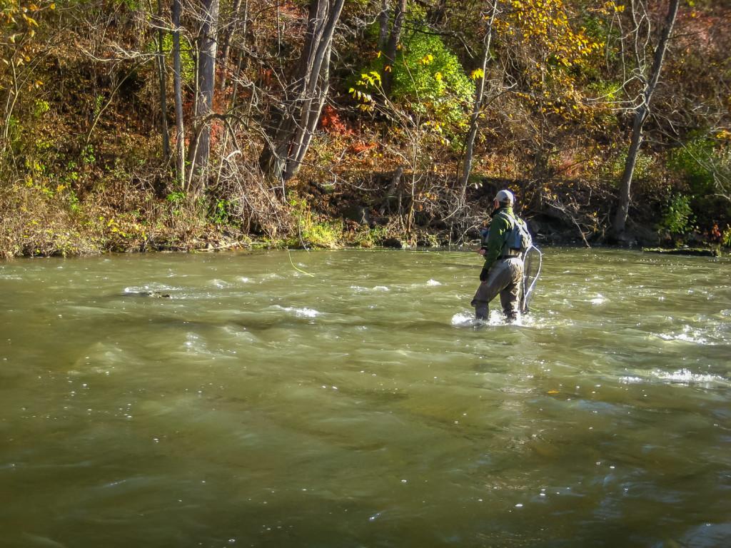 Wading Basics - Fly Fishing