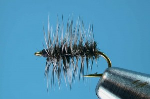 Griffiths Gnat - Winter Fly Fishing