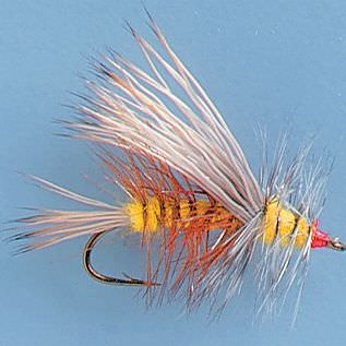 Attractor Dry Fly - Two Fly Setup