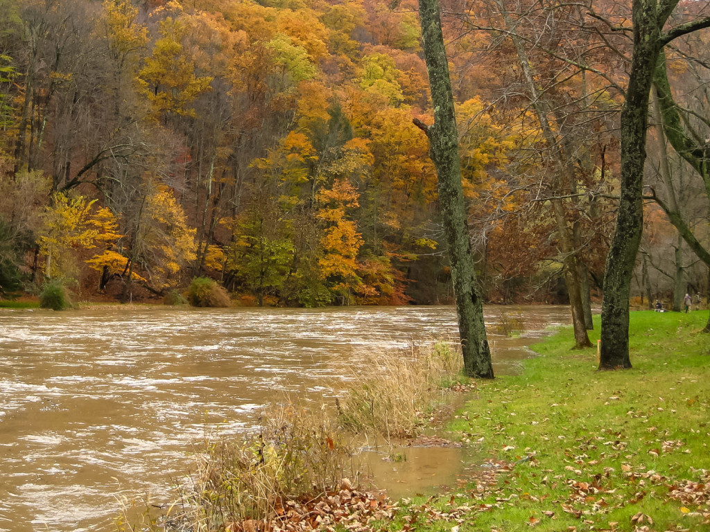High Water Fly Fishing - The Fly Fishing Basics