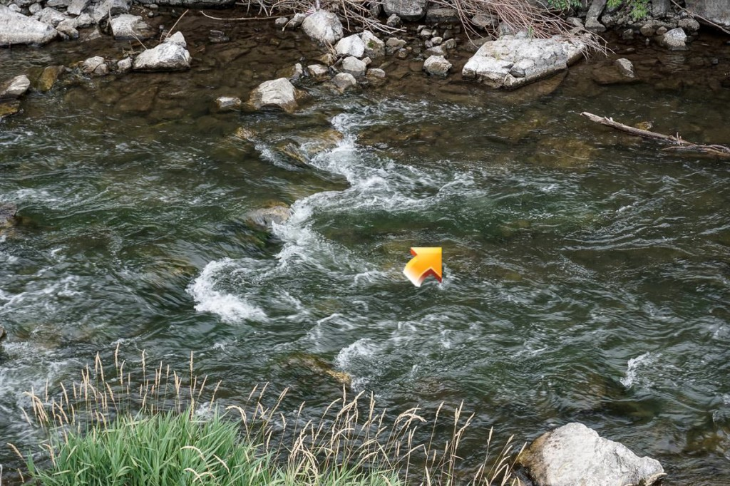 Fly fishing pocket water 3 places to fish the fly for Fly fishing basics
