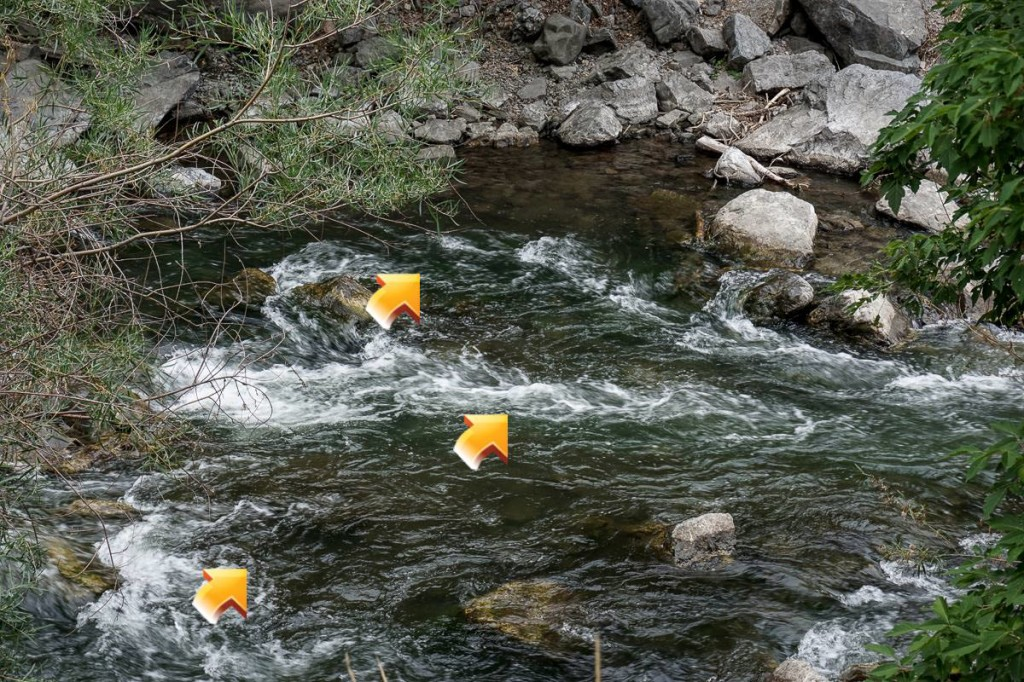 Fly Fishing Pocket Water - Key Place 2 Example 1