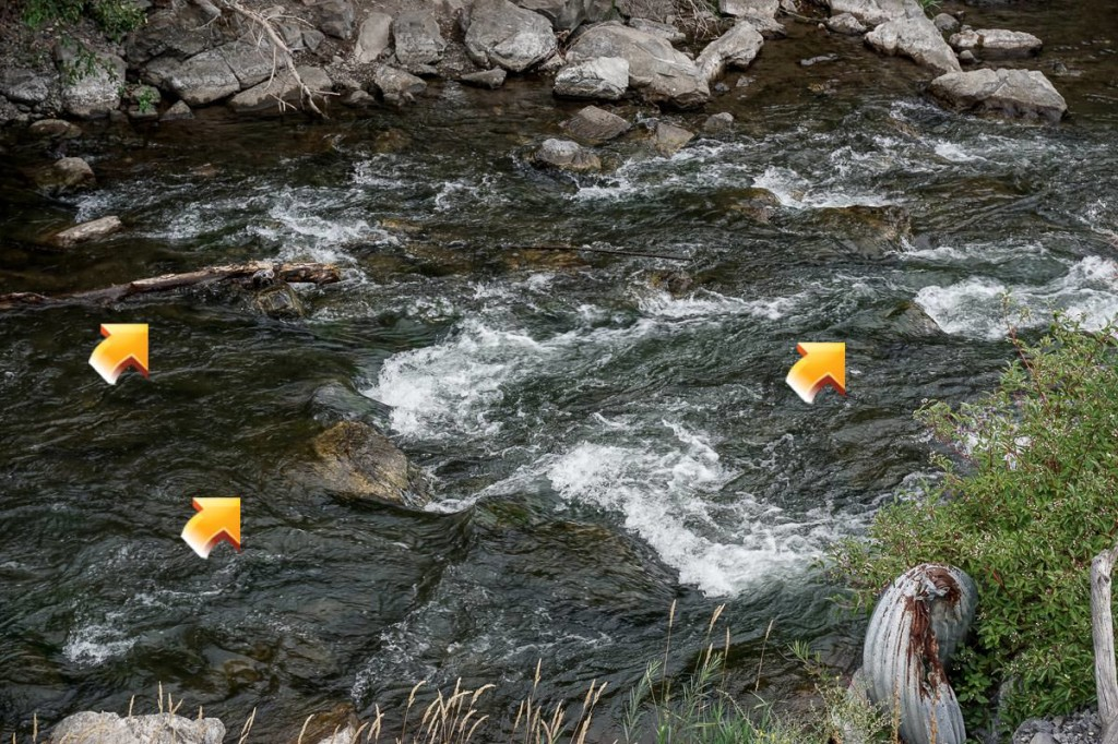 Fly Fishing Pocket Water - Key Place 3 Example