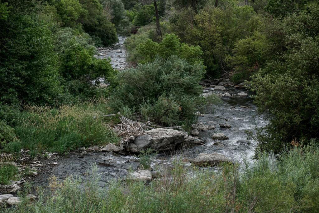 Fly Fishing Pocket Water - Pocket Water River