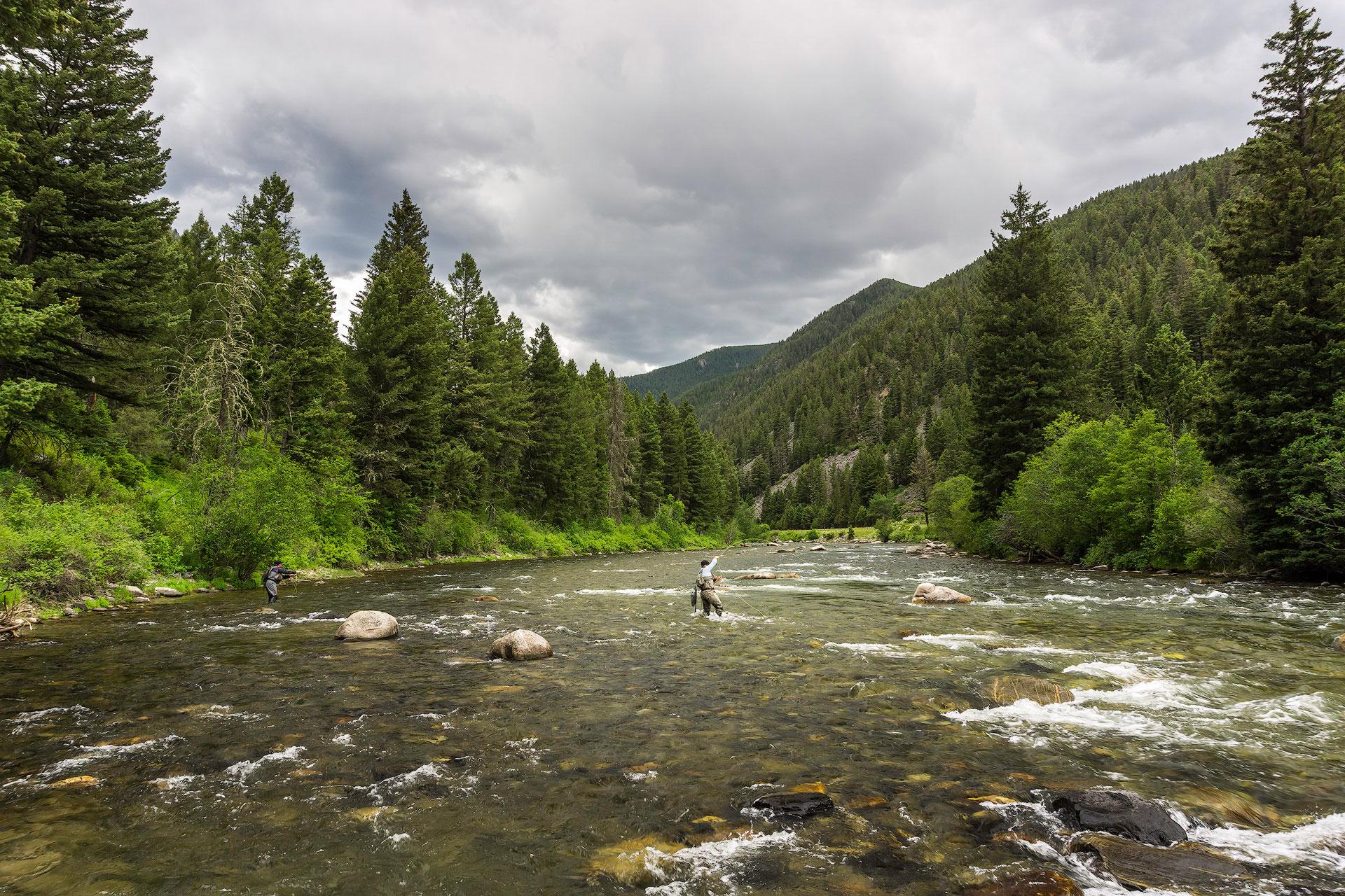 Fishing for beginners for Fly fishing basics